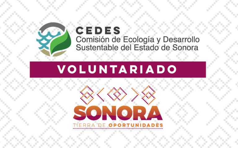 Voluntariado de la CEDES