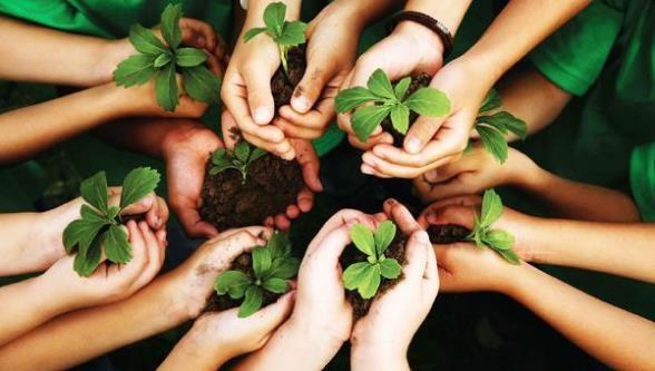 Cambio Climático y Cultura Ambiental